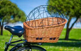 Panier pour chien à louer avec vélo