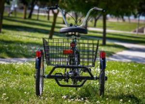 Tricycle vue arrière